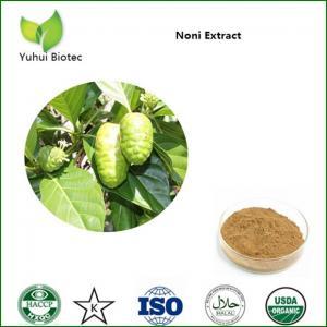 China Noni Extract,noni powder,noni fruit extract,noni p.e,noni fruit powder on sale