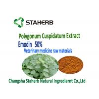 Quality Polygonum Cuspidatum Root Extract Phytogenic Feed Additives Veterinary for sale