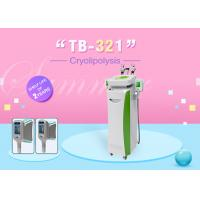 Touch Screen Cryolipolysis Slimming Machine With Cavitation RF Heads Manufactures