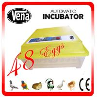 Fully automatic 48 Eggs Chicken Egg Incubator/Egg Incubator/Mini Egg Incubator VA-48 for sale Manufactures