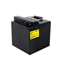 158x180x205MM 48V 20Ah 960Wh Lithium Power Pack Manufactures