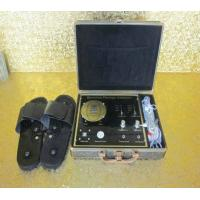 China THENS Quantum Magnetic Body Analyzer Equipment 38 Reports , Dual-Core Third Generation on sale
