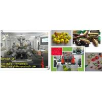 Buy cheap Small Capacity 7000 balls / H Championship Paintball Automatic Encapsulation Machine For CS Game from wholesalers