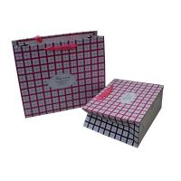 Pink Square Ribbon Handle  cutomized Paper Carrier Bag for Gift Packing Matt Coated Manufactures