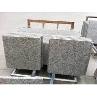 China Tiger skin white granite tiles and slab on sale