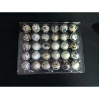 30 Holes Clamshell clear transparent plastic PVC quail egg tray Manufactures