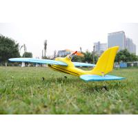 China Mini 4ch Sport Plane Dolphin Glider 2.4Ghz Radio Controlled RC Airplanes For Beginner on sale