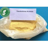 Anabolic Steroid CAS 10161-34-9 Trenbolone Acetate For Fat Loss Manufactures