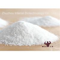 Analgesic Powder Lidocaine HCl / Lidocaine Hydrochloride , Local Anesthetic Drugs Manufactures