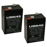 sealed Lead-Acid 4Ah 6v rechargeable battery with ABS case Manufactures