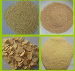 DEHYDRATED GARLIC GRANULES 16-26MESH Manufactures