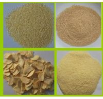 DEHYDRATED GARLIC GRANULES 26-40MESH Manufactures