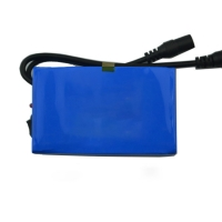 IEC62133 12V 2500mAh Lithium Ion Polymer Battery Pack Manufactures