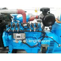 Natural Gas Generator with Cummins Engine Manufactures