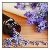 Lavender Oil for Toenail Fungus,lavender Essential Oils for Diffuser, lavender oil for soap making Manufactures