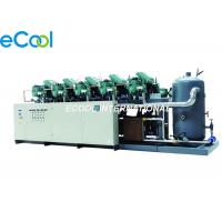 Bizter Low Temperature Screw Parallel Compressor Unit for Vegetable and Fruit Cold Room Manufactures