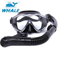 High Performance Anti Fog Diving Snorkel Set , Diving Mask And Snorkel Sets For Men Manufactures
