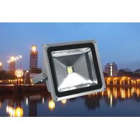 High Power Outdoor Led Flood Light 10w - 100w White / Rgb Color for Stage Manufactures