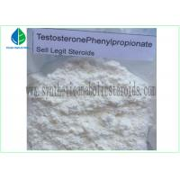 99% Purity Raw Hormone Powders Steroids Testosterone Phenylpropionate for Muscle Mass Manufactures