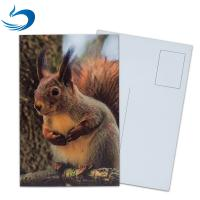 PET Seascape Pantone Color 3D Lenticular Printing Postcards For Greeting Light Weight Manufactures