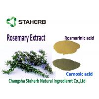Light Brown Powder Rosemary Leaf Extract ,  Organic Rosemary Extract Kill Free Radicals Manufactures
