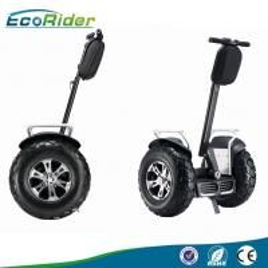Brushless Motor 4000 Watt Segway Electric Scooter Self Balancing with Speedmeter Manufactures