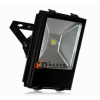 Quality Warm White Outdoor Led Flood Lights 10w /20w Led Floodlighting for sale