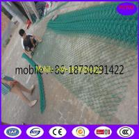 China Wire Mesh Fence/Wire Fencing /PVC Coated Chain Link Fence on sale