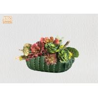Succulents Plant Pots Green Color Flower Pots Cactus Design Pot Planters Tabletop Flower Pots Manufactures