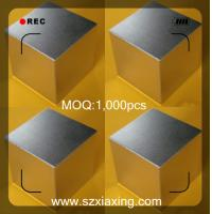 China neodymium magnet experiment on sale
