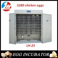 Wooden pocked fully Automatic Egg Incubator for sale Large incubator 5280eggs incubator Manufactures