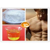 China TM Blend 500 Steroid Injection Oil Bulking / Cutting Cycle Mixed Injection Gear on sale