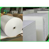 300gsm + 15gPE Biodegradable Food Container Cardboard 100% Harmless Manufactures