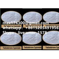China Raw Testosterone Anabolic Steroid Powder Injectable CAS 58-20-8 USP30 Standard on sale