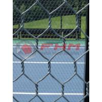 Buy cheap Hex mesh for Paddle Tennis Courts Wholesale 16 AWG Wire Professional Manufacture from wholesalers