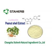 Peanut Skin Antibacterial Plant Extracts Luteolin Powder Aluteolin 98% HPLC Manufactures