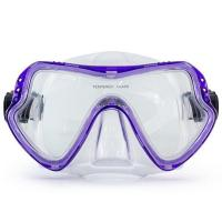 One Piece Lens Scuba Diving Mask / Adult Diving Mask with Silicone Strap Manufactures