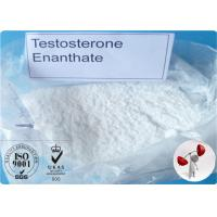 Bodybuilding Testosterone Steroid Hormone Testosterone Enanthate for Muscle Growth Manufactures