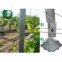 Recyclable Grape Vine Stakes 1.5MM Thick Manufactures