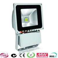 Toughened Glass Outdoor LED Flood Lights 100w With CE & RoHS Approval Manufactures