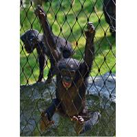 Buy cheap Plain Weave Stainless Steel Zoo Mesh High Safety Without Toxic Material-Monkey from wholesalers