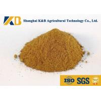 China Promote Animal Growth Poultry Feed Products With Fresh Fish Raw Material on sale