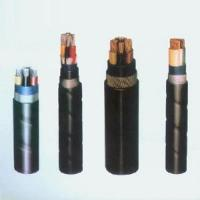 XLPE Insulated Electric Cable Manufactures