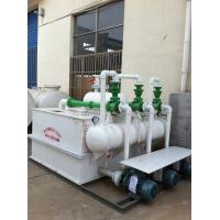 China RPP  water injection vacuum pump set on sale