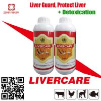 Poultry Feed Supplement Broiler Growth Promoter Liver Care Tonic Solution Manufactures