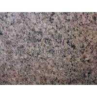 Quality Granite Stone Gray Color Classical Gray for sale