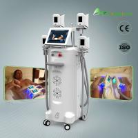 Hot Sale factory price  freeze fat cool body sculpting fat freezing cryolipolysis machine for salon clinic home Manufactures