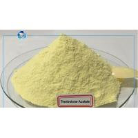China Top Purity Above 98% Trenbolone Acetate Yellow Raw Powders For Bulking Lean Muscle on sale