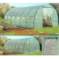Polycarbonate Plastic Sheet Agricultural Mini Garden Green House Walk In Dome Manufactures