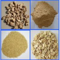China DEHYDRATED GINGER GRANULES 16-40MESH on sale